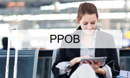 Profil-PPOB