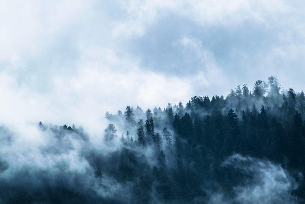 fog-1535201_1920-1024x683
